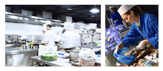 Le transport frigorifique, un rôle majeur dans l'approvisionnement et la sécurité alimentaire